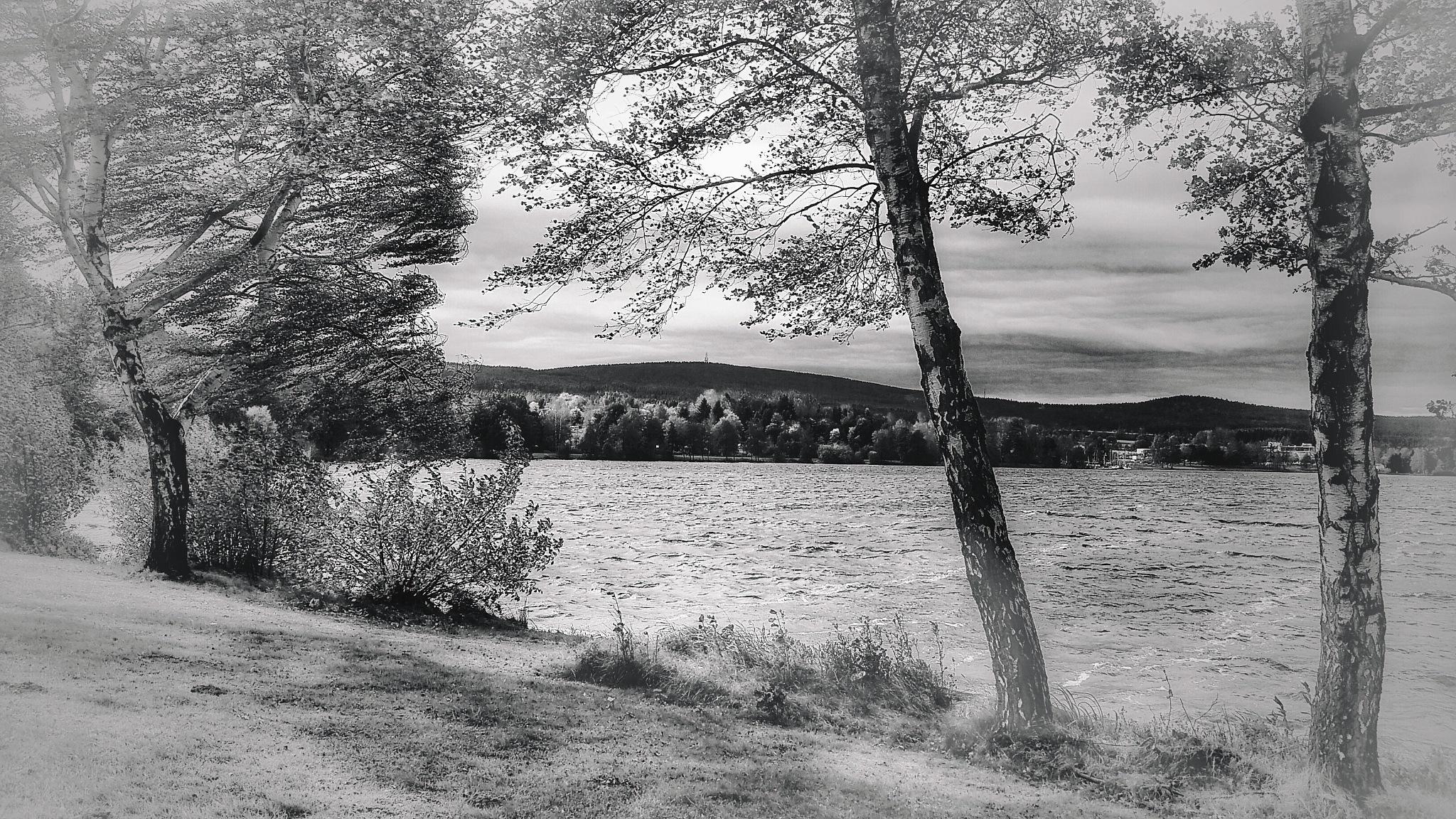 stormy by my lake... by  Jutta