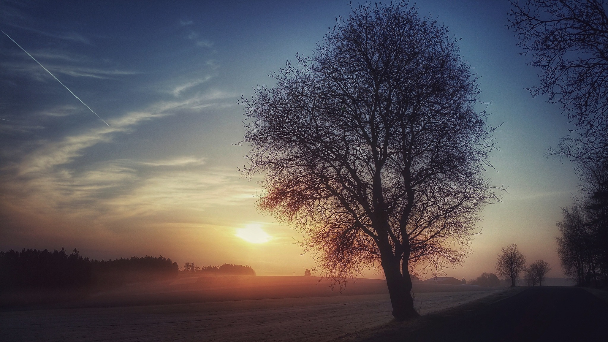 Cold morning by  Jutta