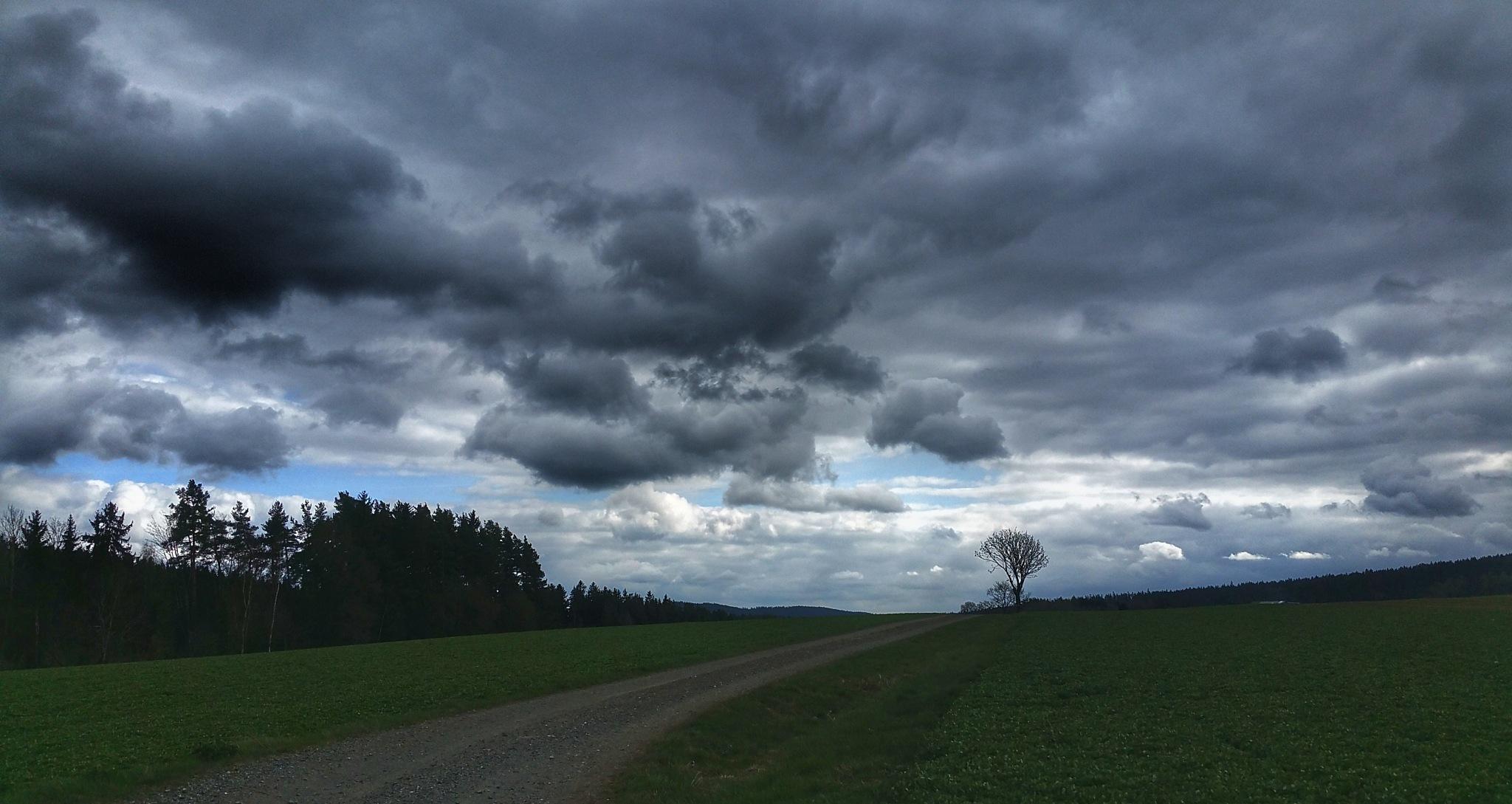 April ... by  Jutta