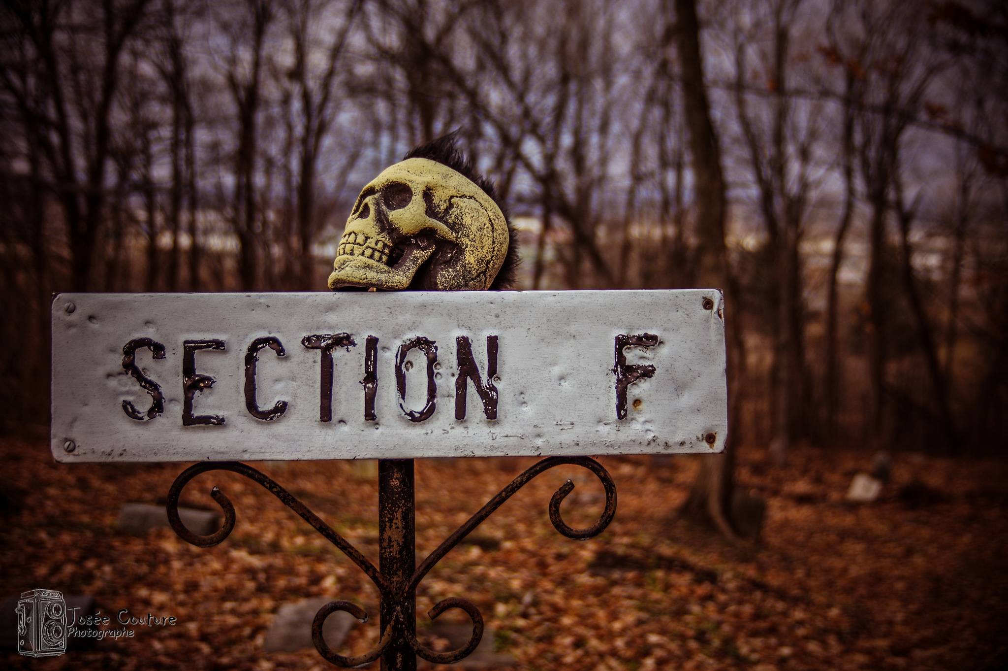 Section F... by Josee Couture Photographie