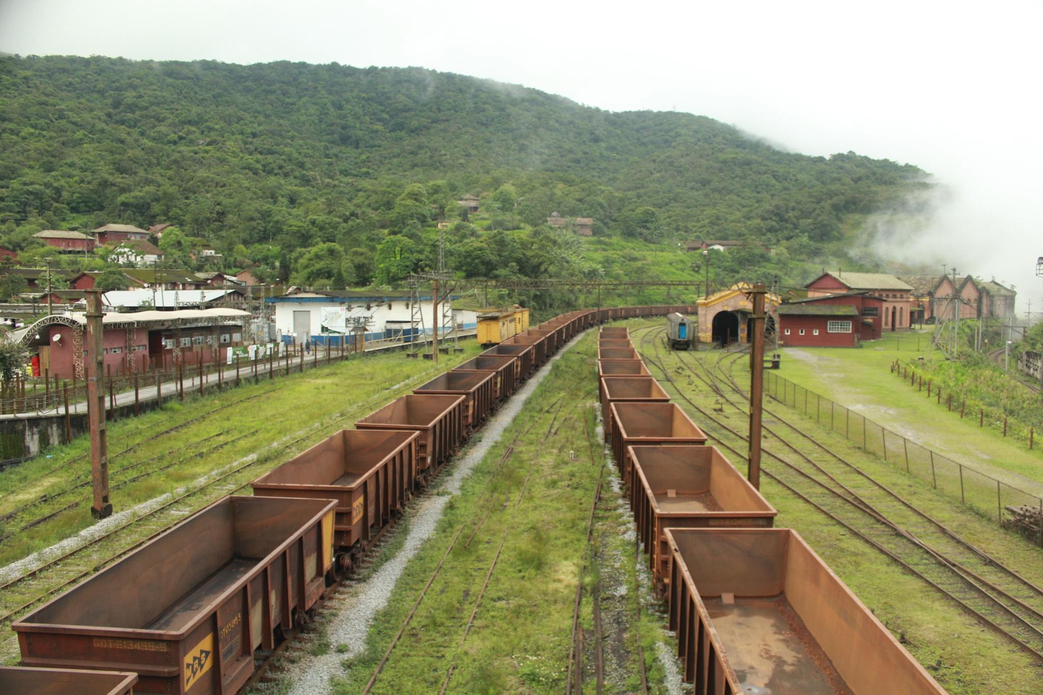 Cargo train by Henrique L. Coubert
