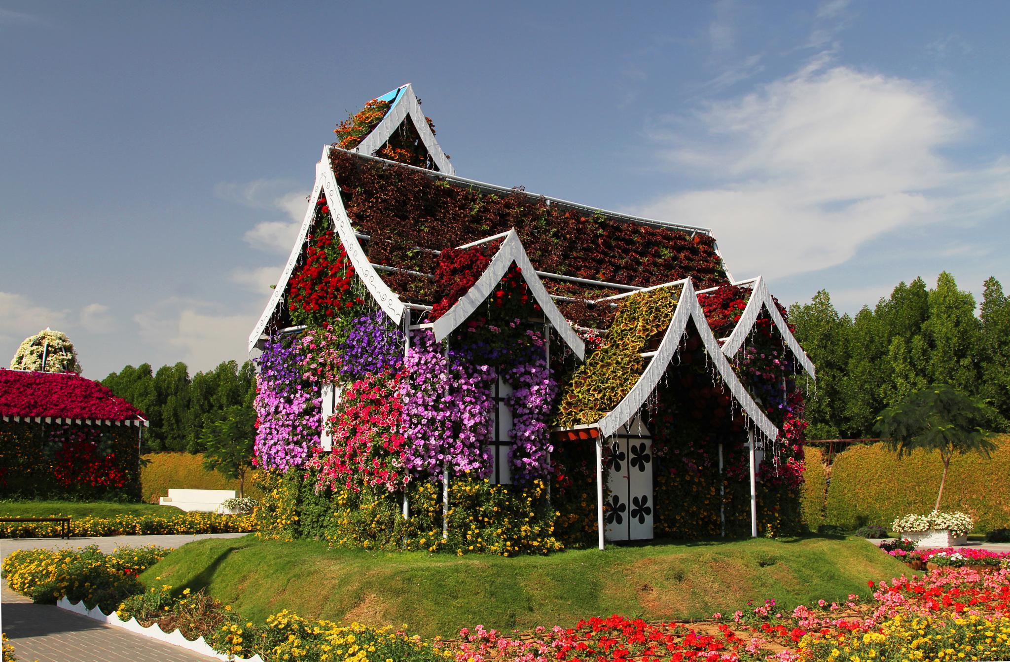 Flower House by Turan Arslan