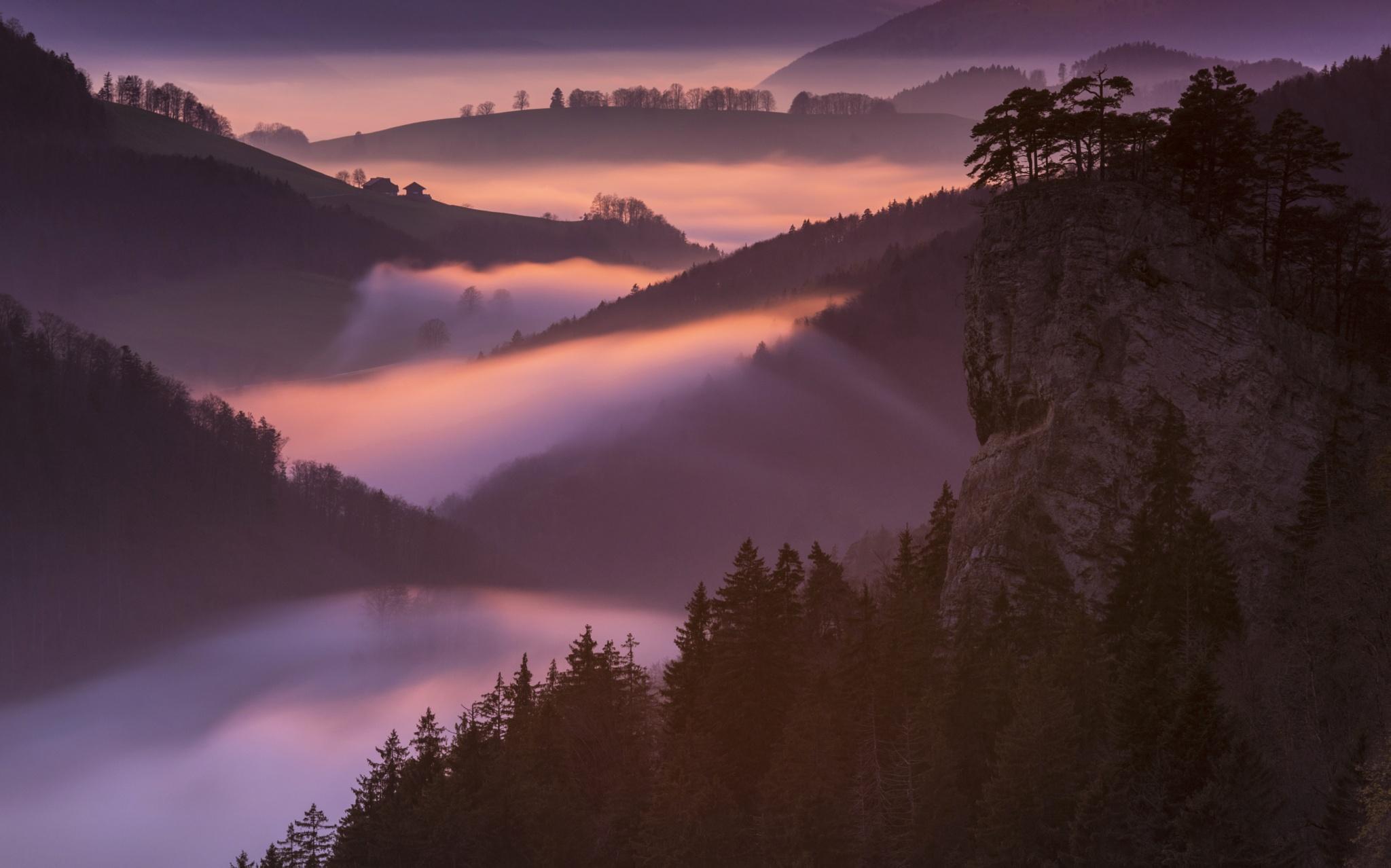 burning fog by Oliver Wehrli