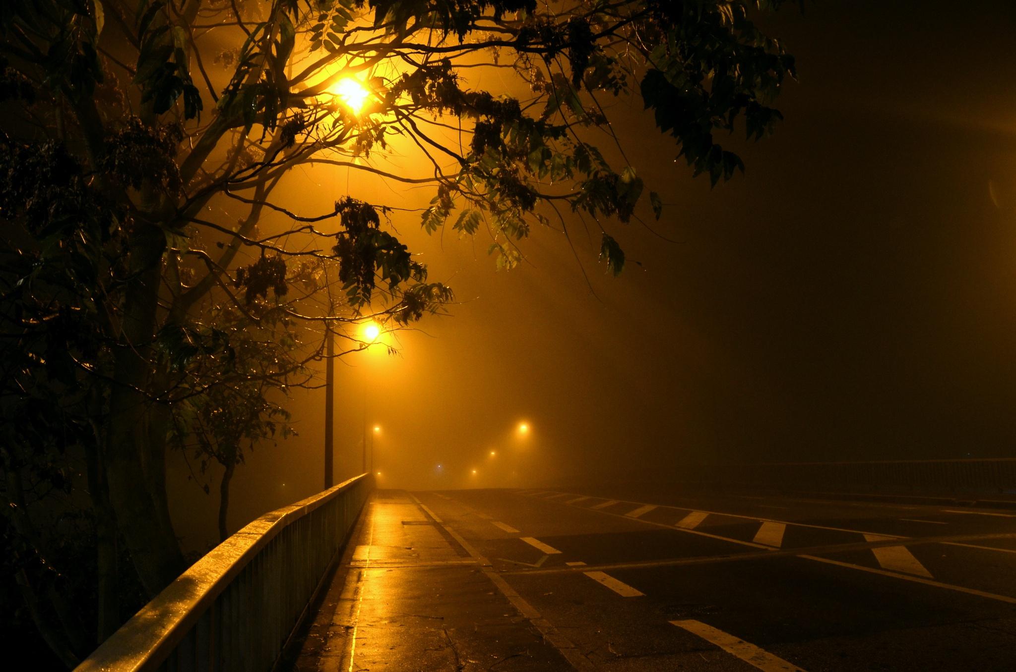 The fog downtown by Bernard Guillon