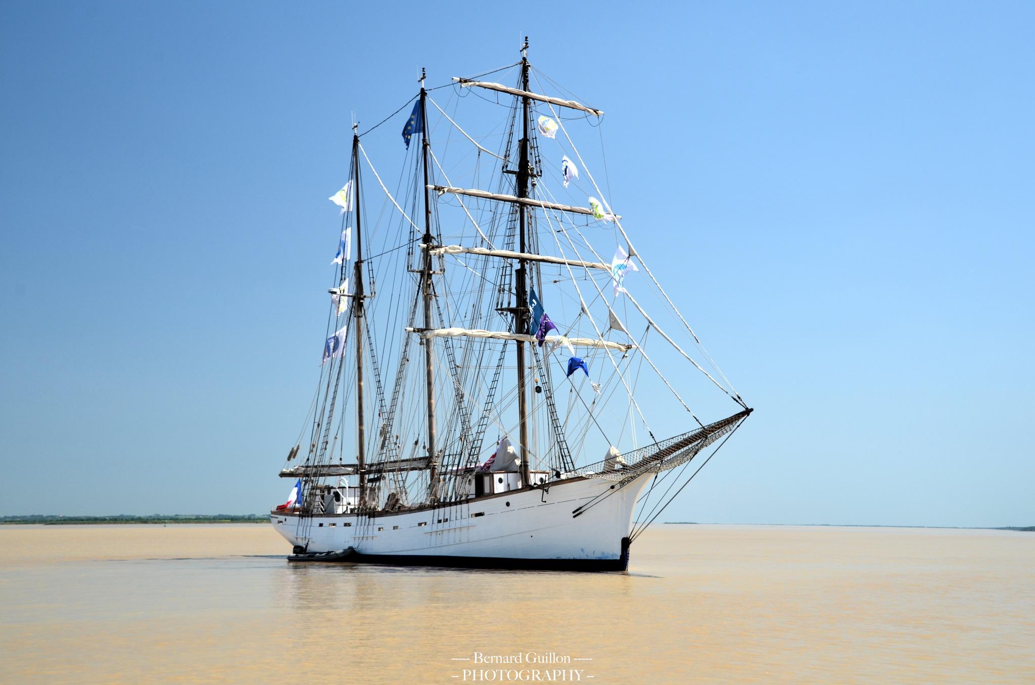 The french vessel Marité by Bernard Guillon