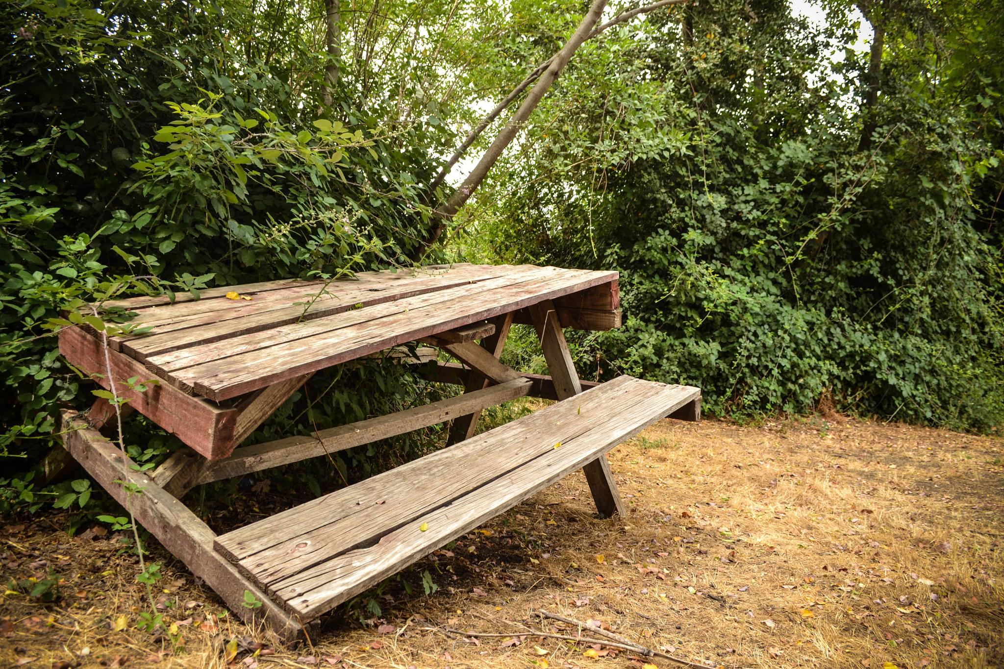 Mesa abandonada / Abandoned table by Jean Cristian Oliva