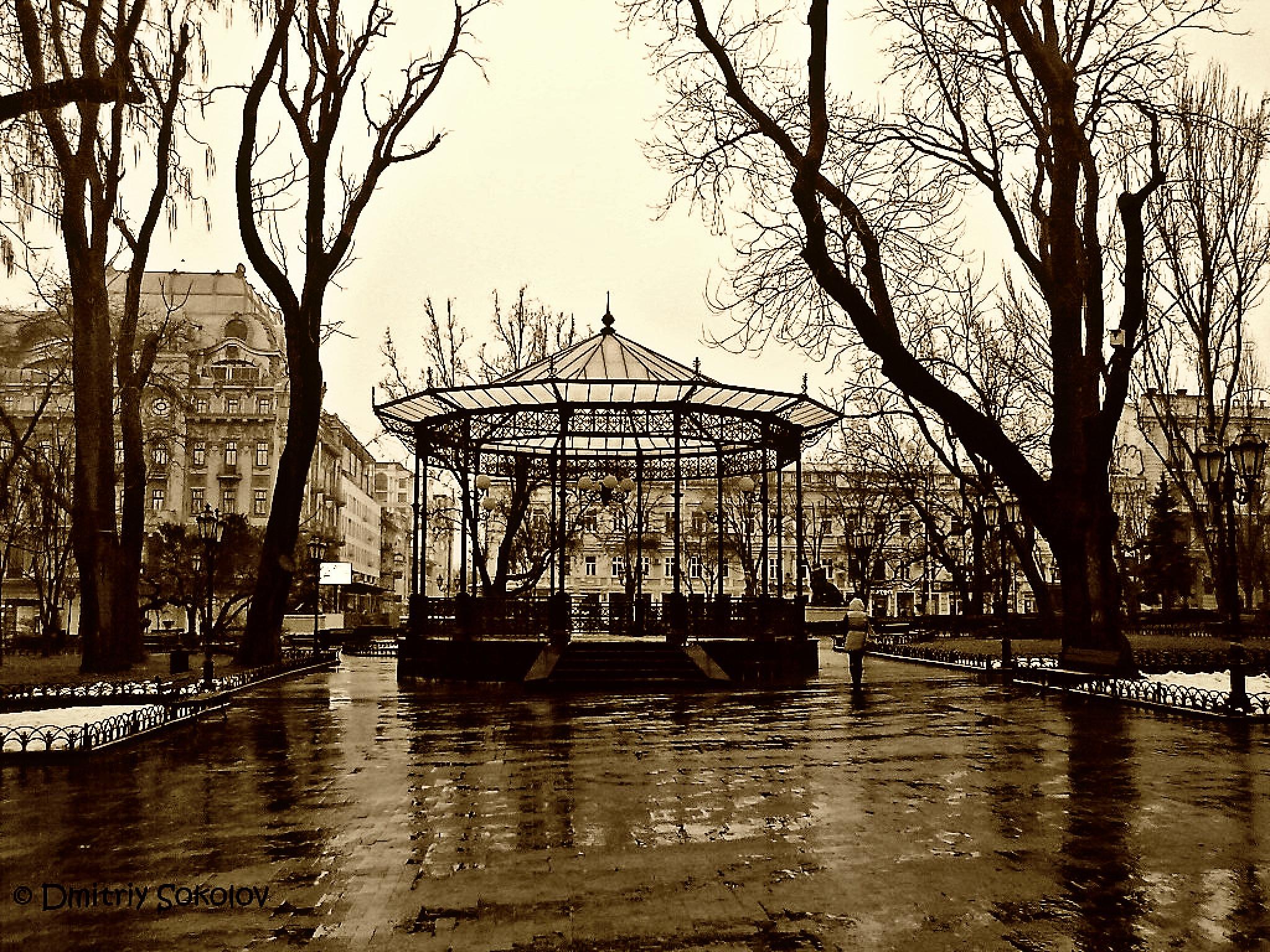 Untitled by Dmitriy Sokolov