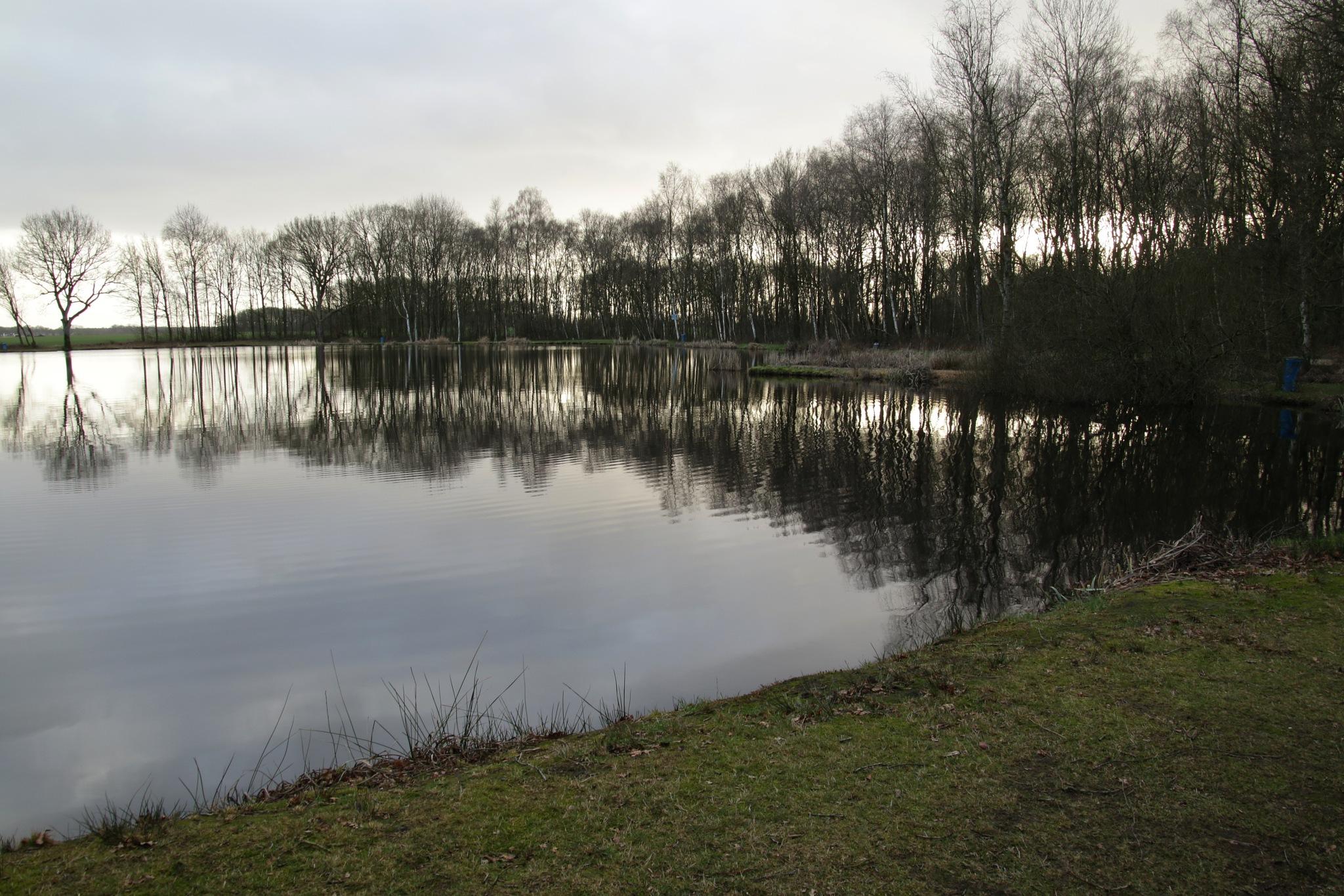 winterwalk 2 by Tineke Deuntje