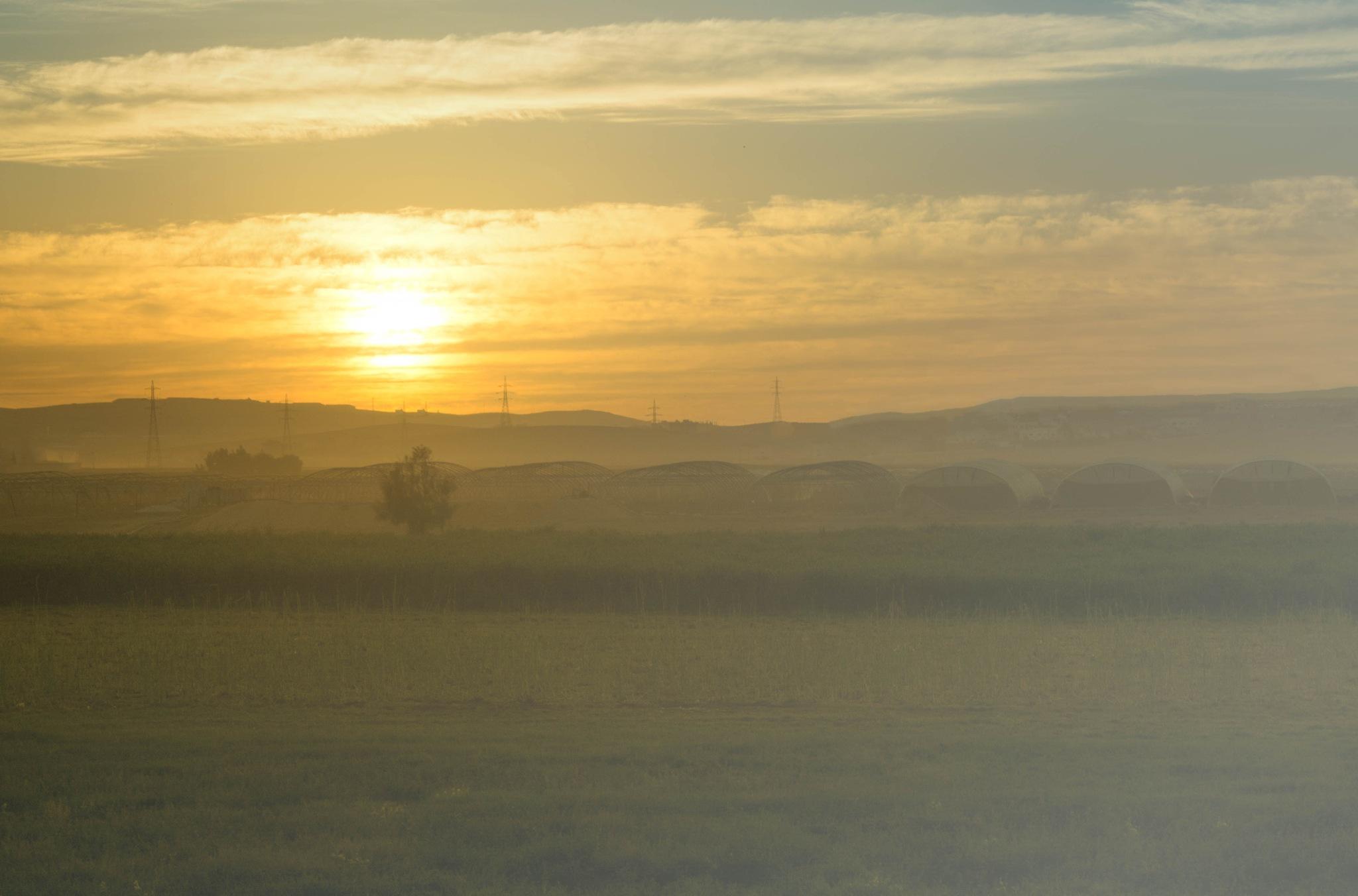 Sunrise by Alaa