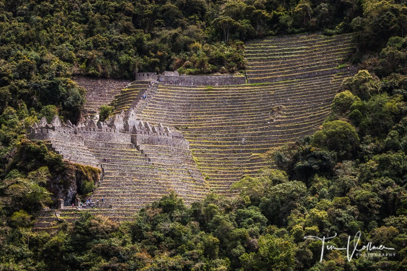 Amazing Wiñaywayna by TimVollmerPhotography