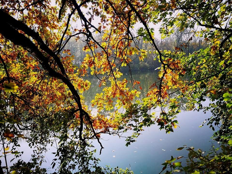 Autumn Melancholy by Iri Rusu