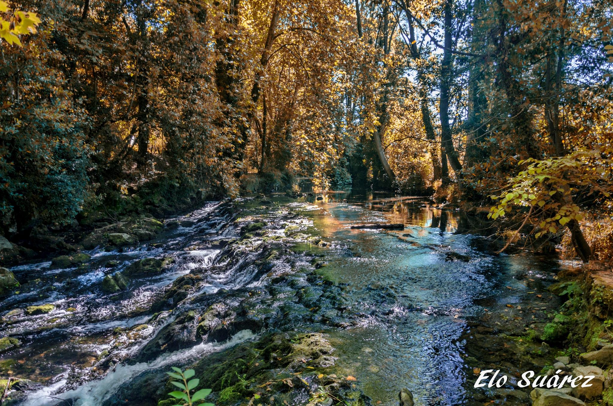 River in autumn by Elo Suárez