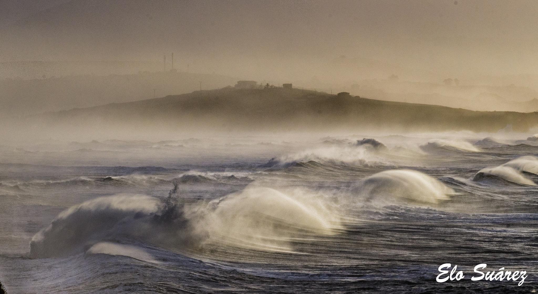 Caprichos del mar  by Elo Suárez