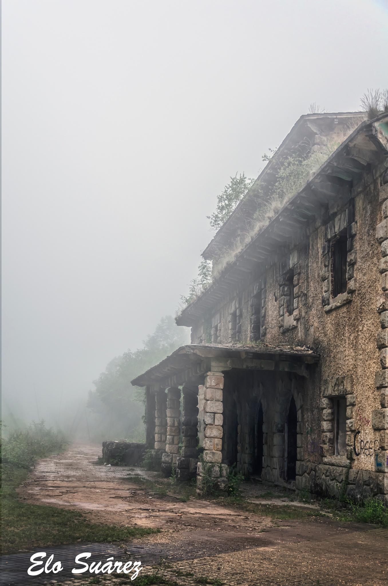 Entre la niebla by Elo Suárez