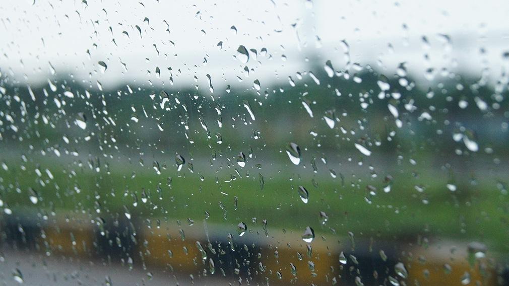 Rain Drops by Ankit Roy