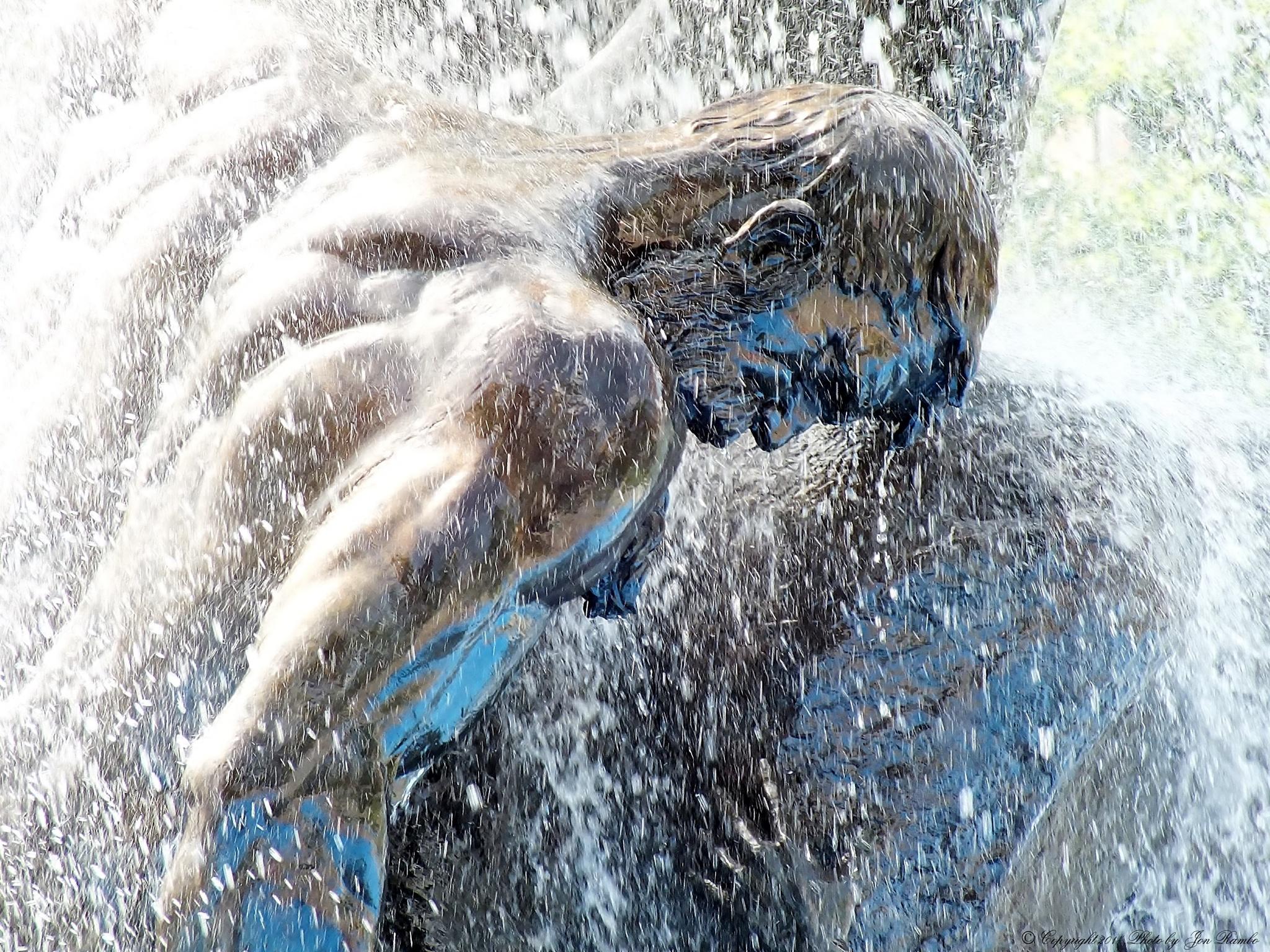 Deluge Fountain (part three) by Mariusz Szmergalski - Jon.Rambo