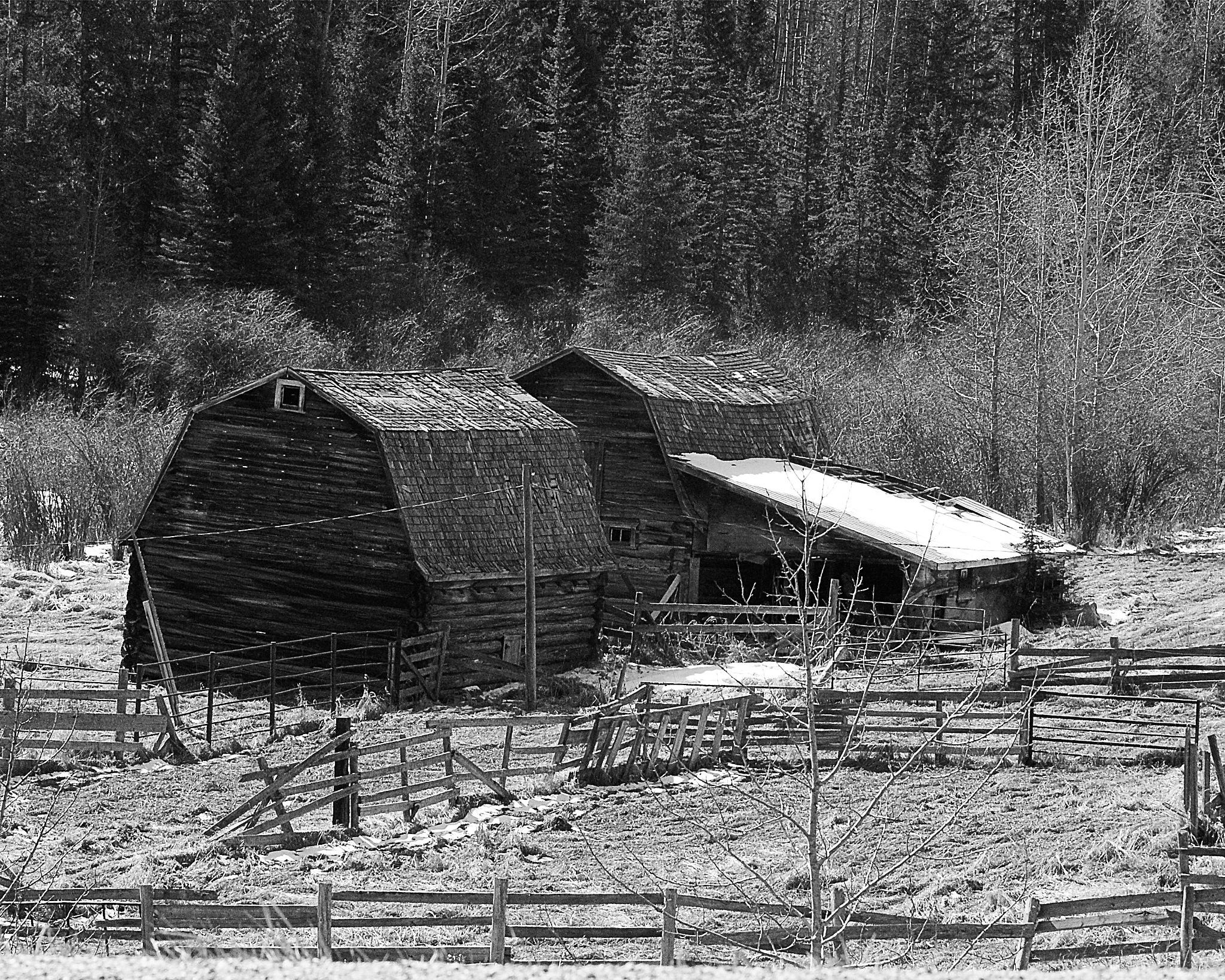 Old barns  by volvoman98