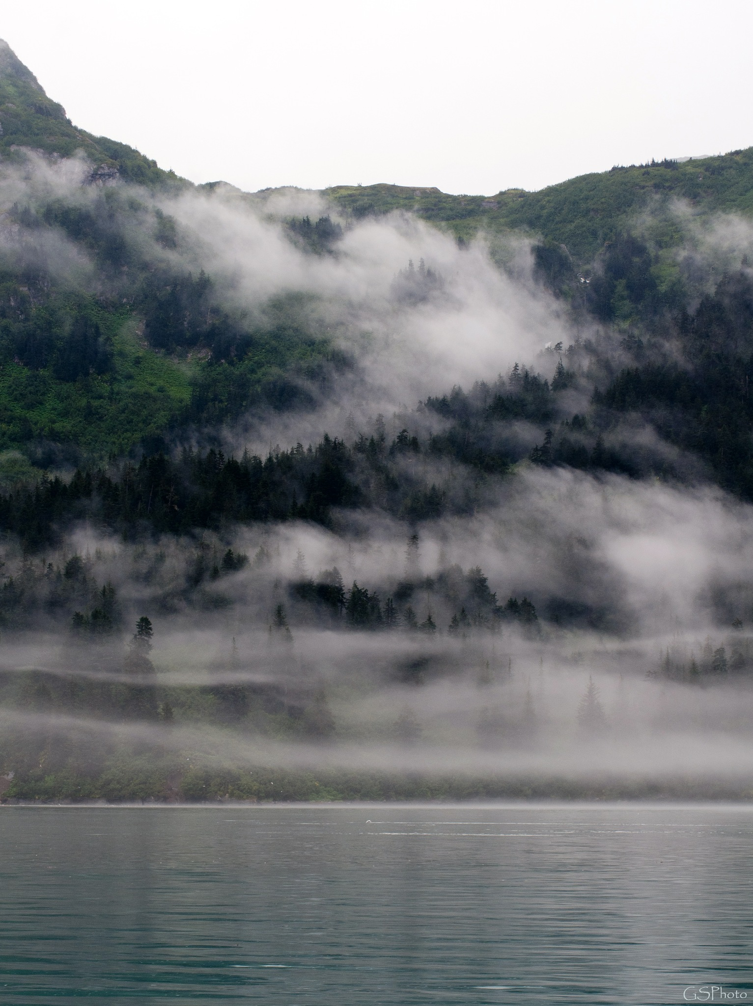 Misty Morning. by GSPhoto