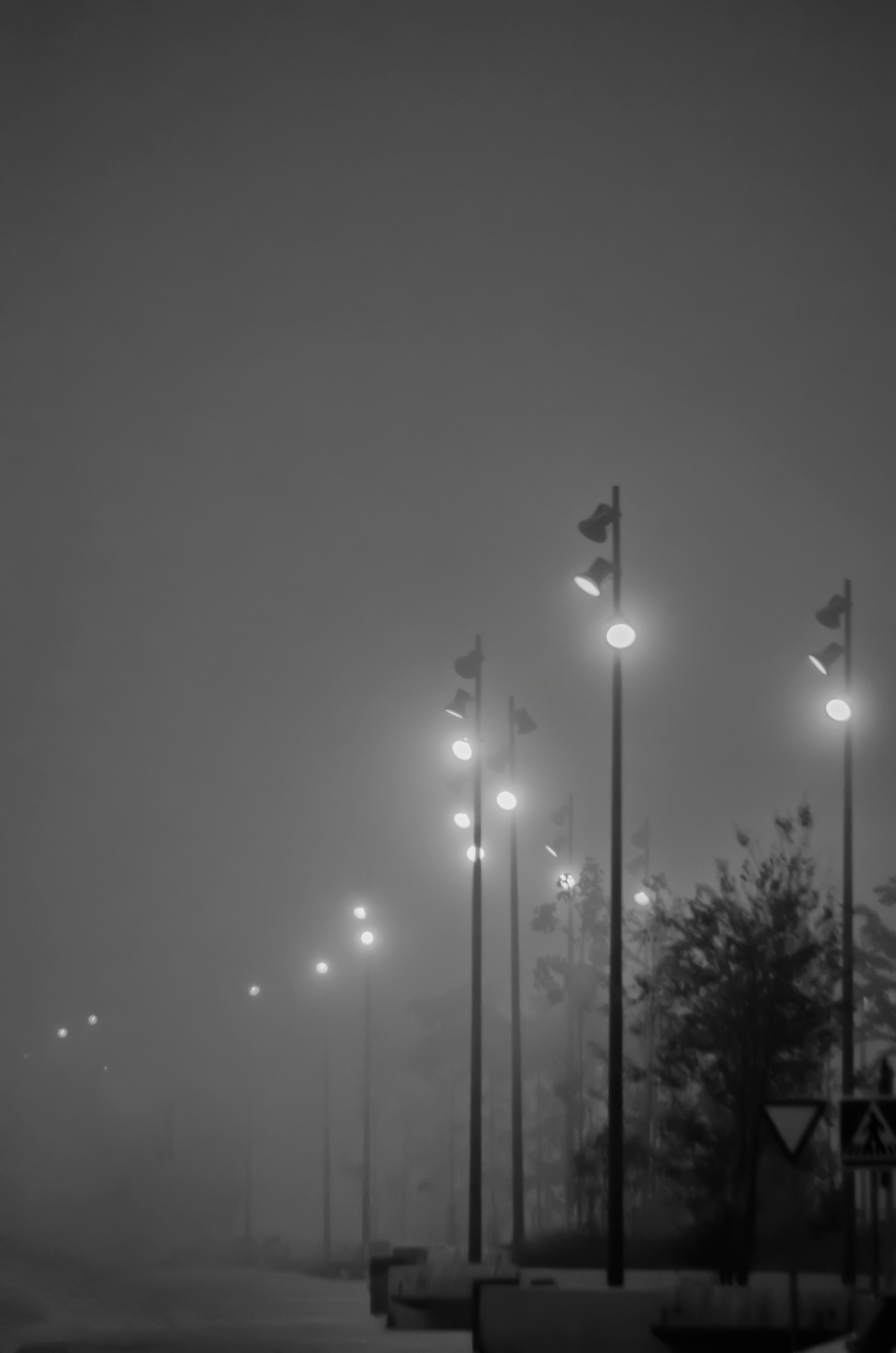 Fog by Gabi PS