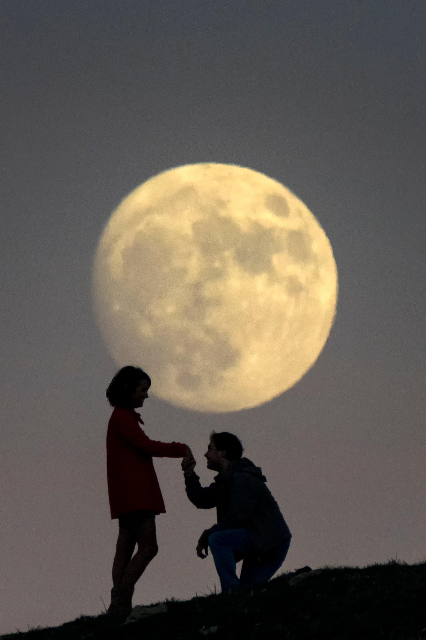 Moonlight lovers by fotoluMiNIcos