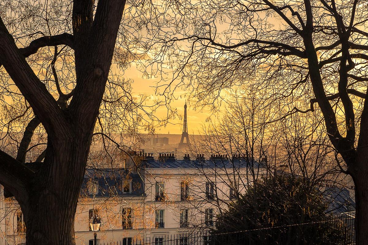 Paris by Matthieu Plante
