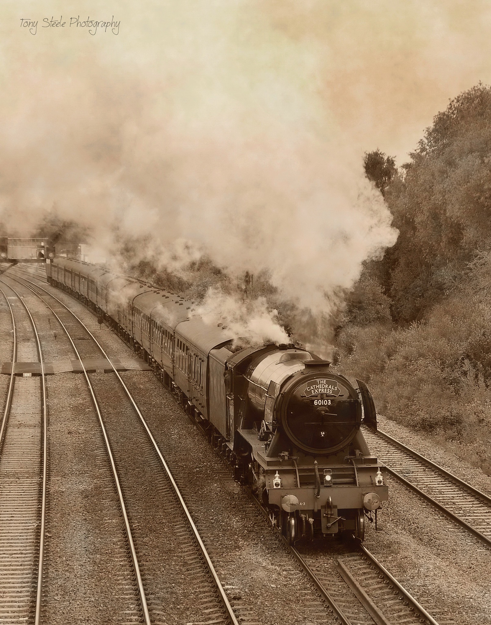 The Flying Scotsman (old style) by Tony Steele