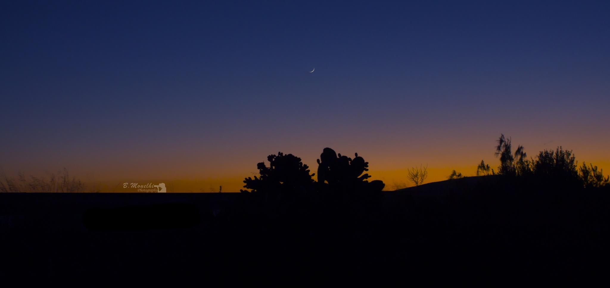 sunset by Mouelhi Badie