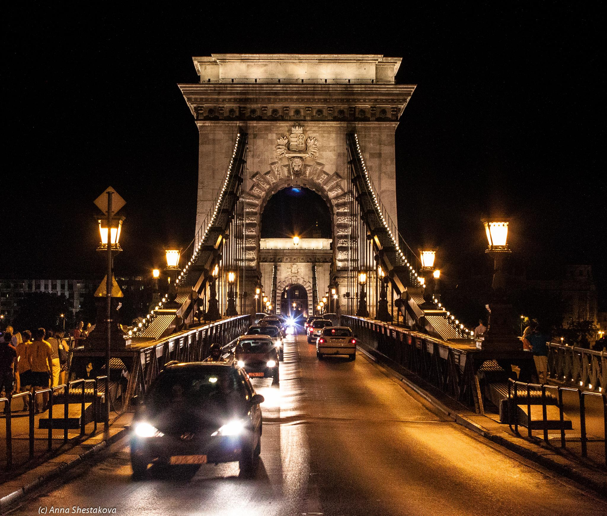 Night. Light. Bridge. by Anna Shestakova