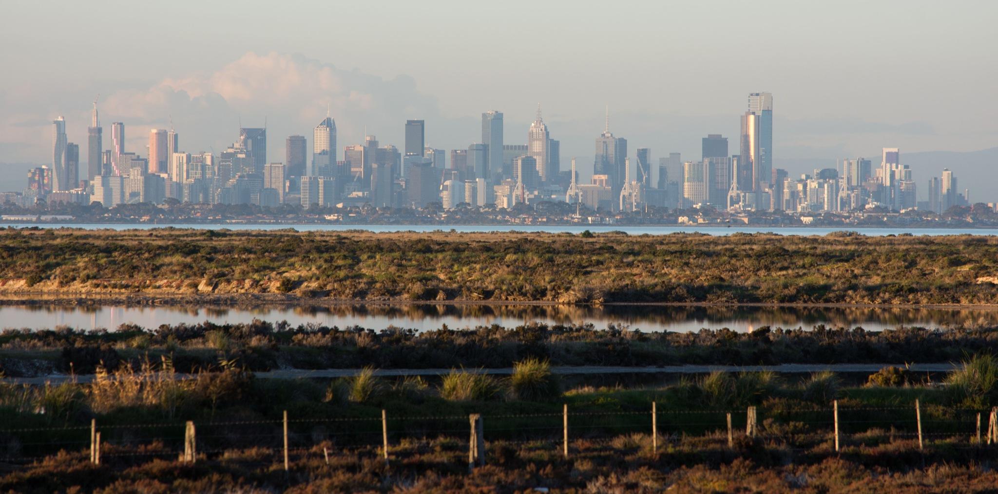 Melbourne skyline by Steve Cartwright