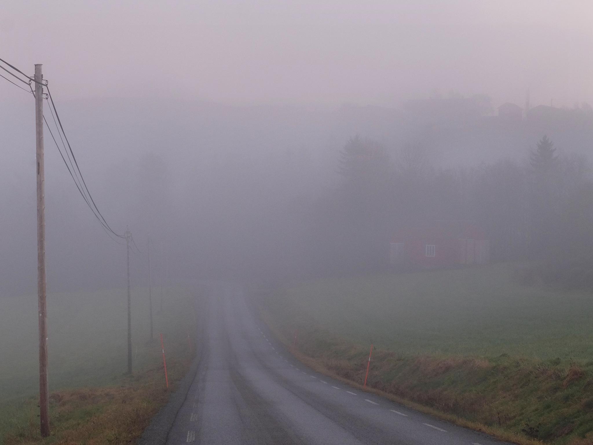 Rural Road by Jan Arvid Solem