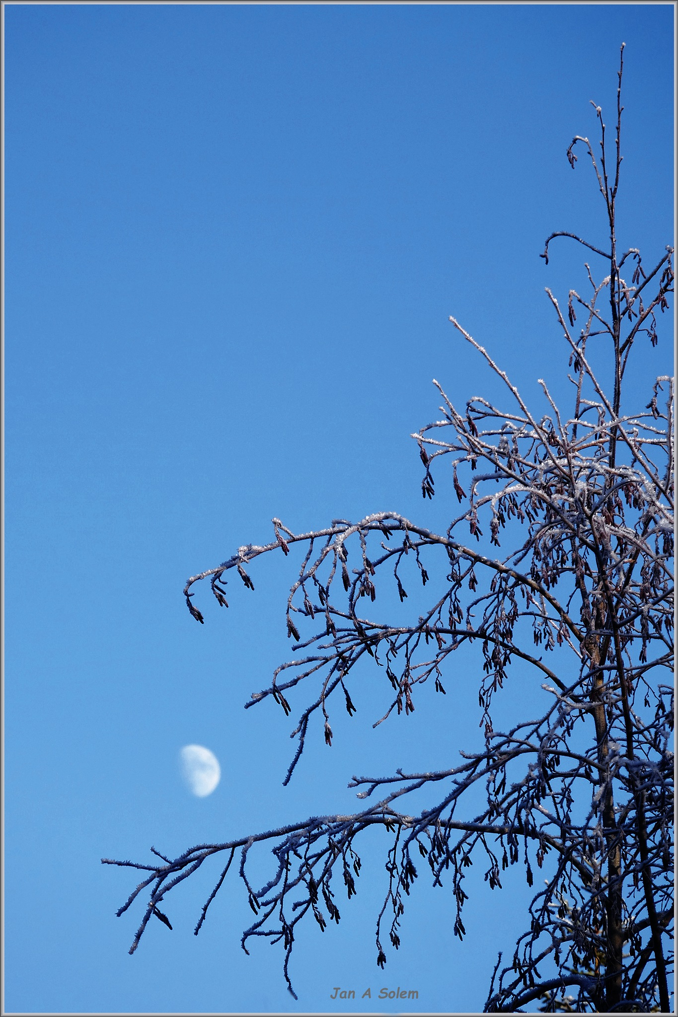 February Blue by Jan Arvid Solem
