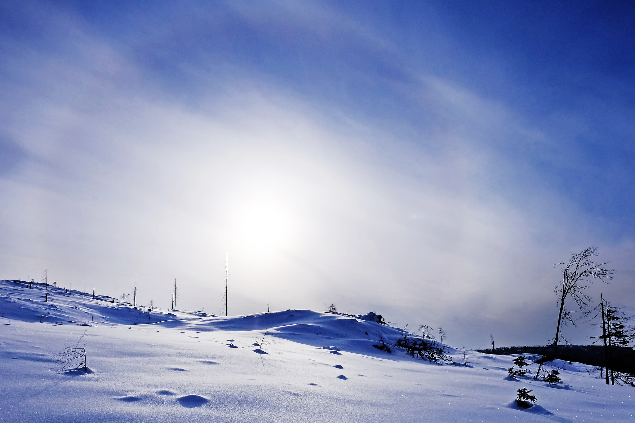Winter Halo by Jan Arvid Solem