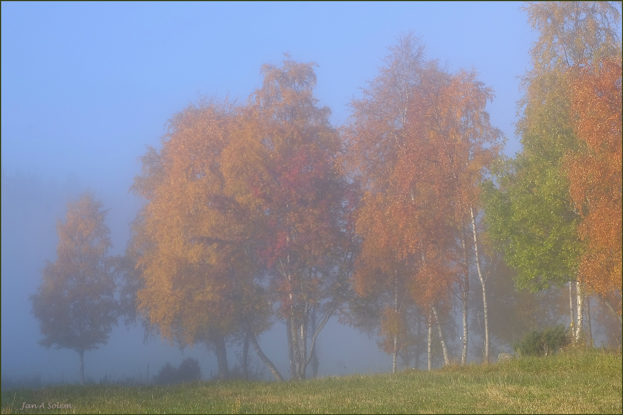 Colors of the Autumn by Jan Arvid Solem
