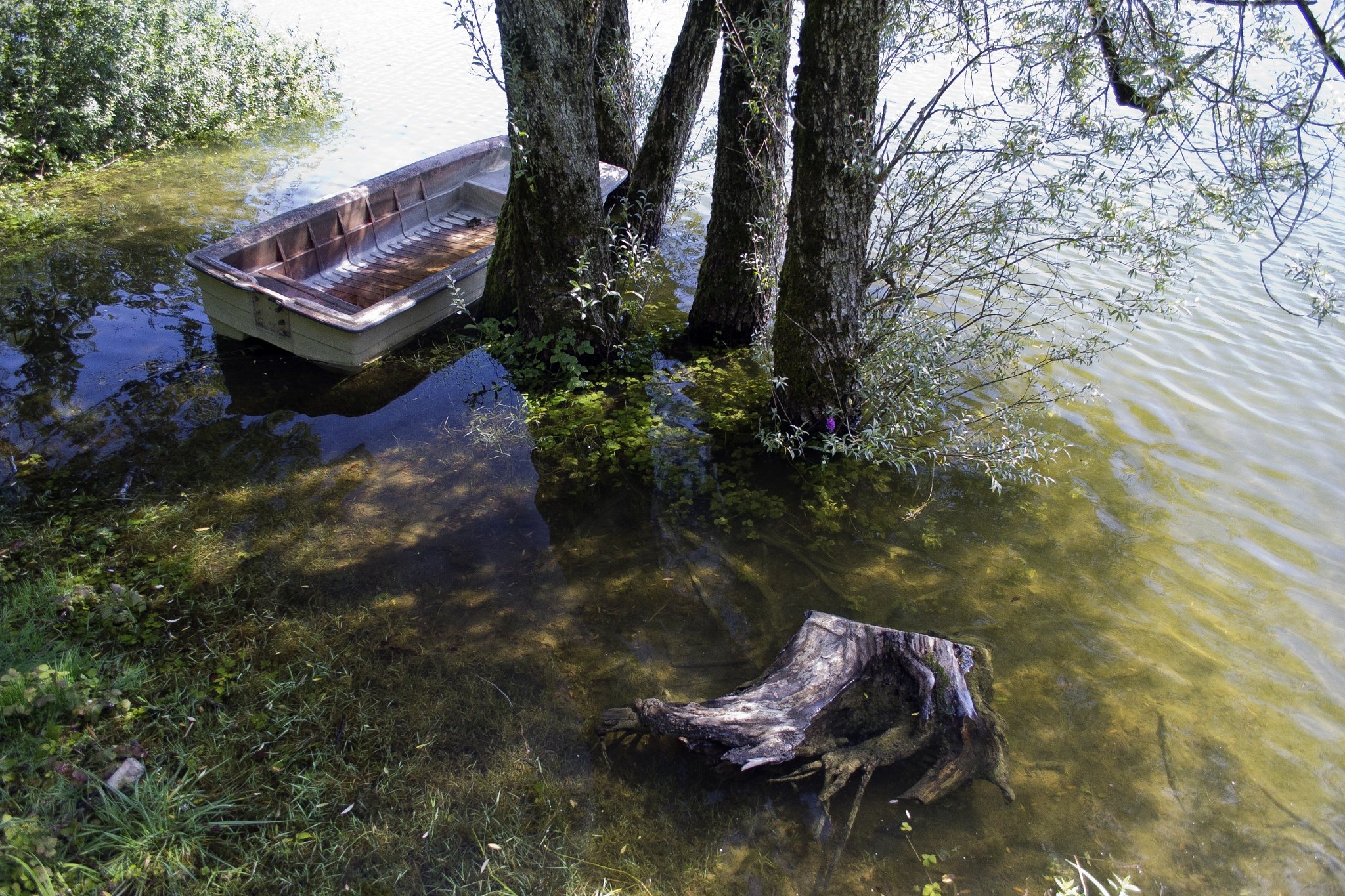 Boat at Lac de Bret by MarieJirousek