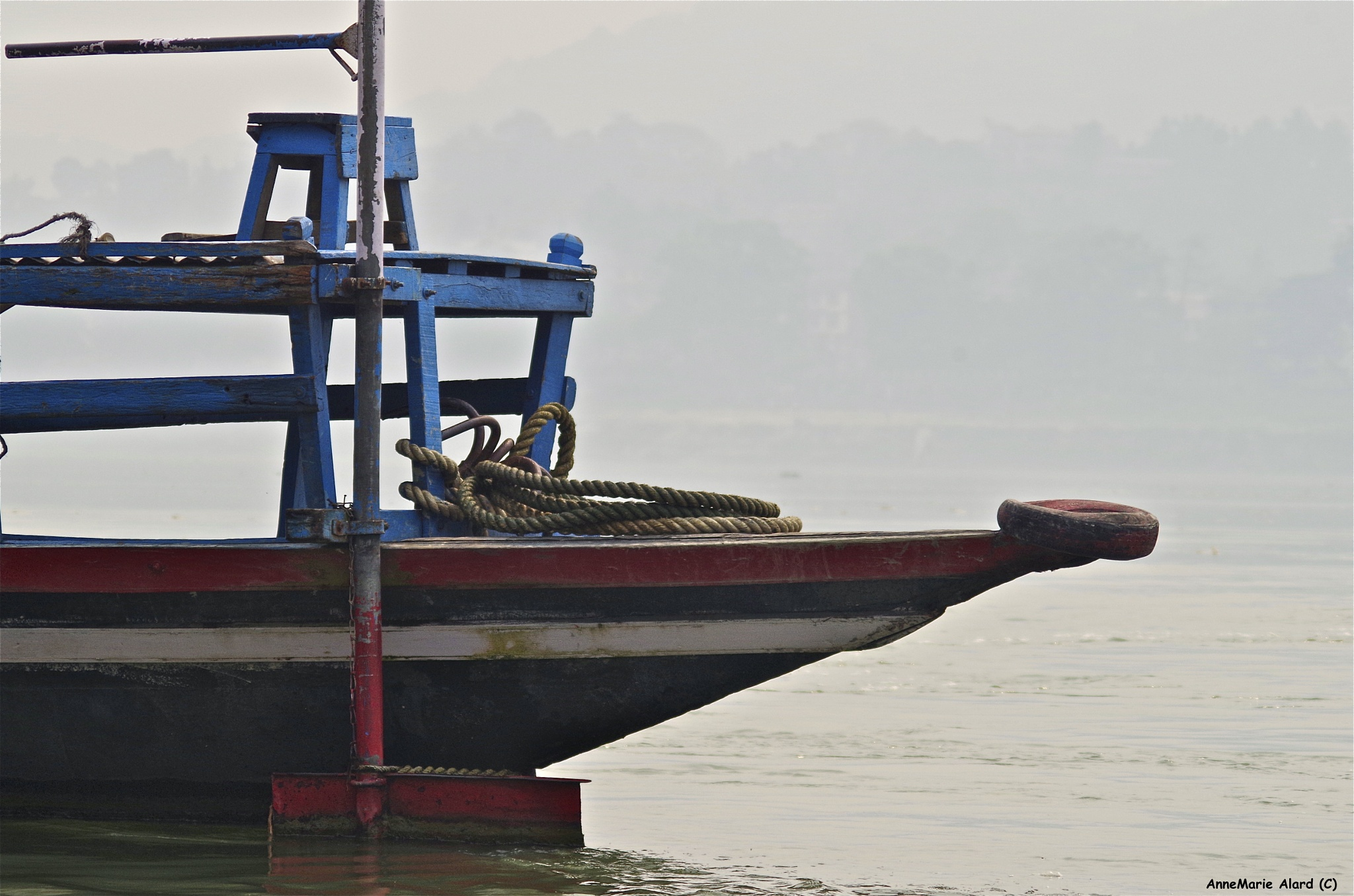 Paboat from India by annemariealard
