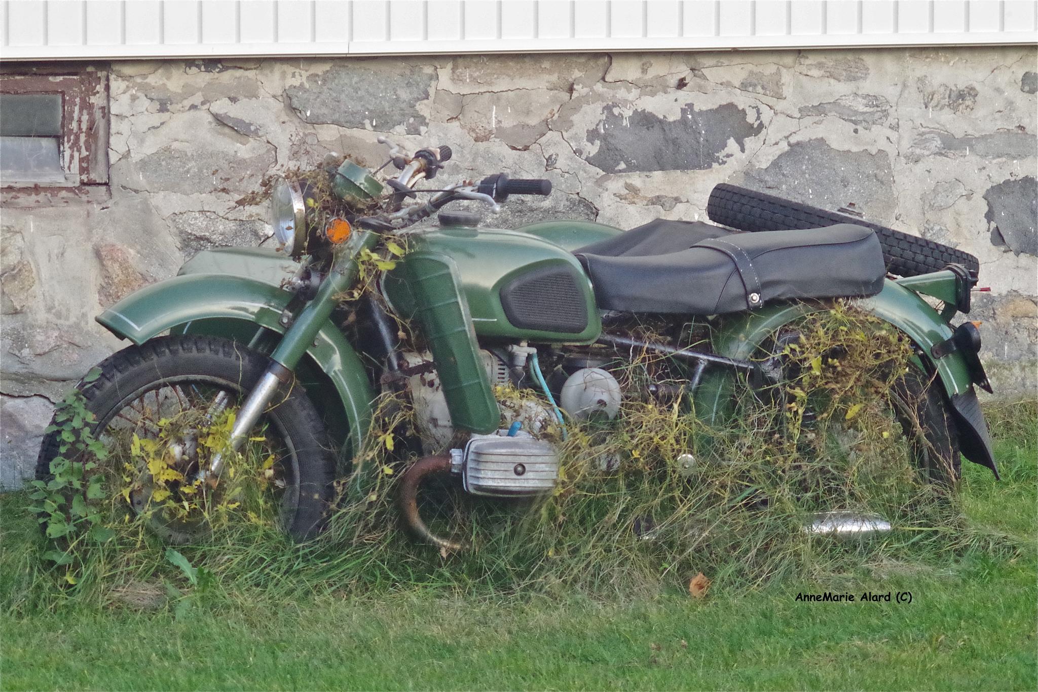 Motorbike by annemariealard