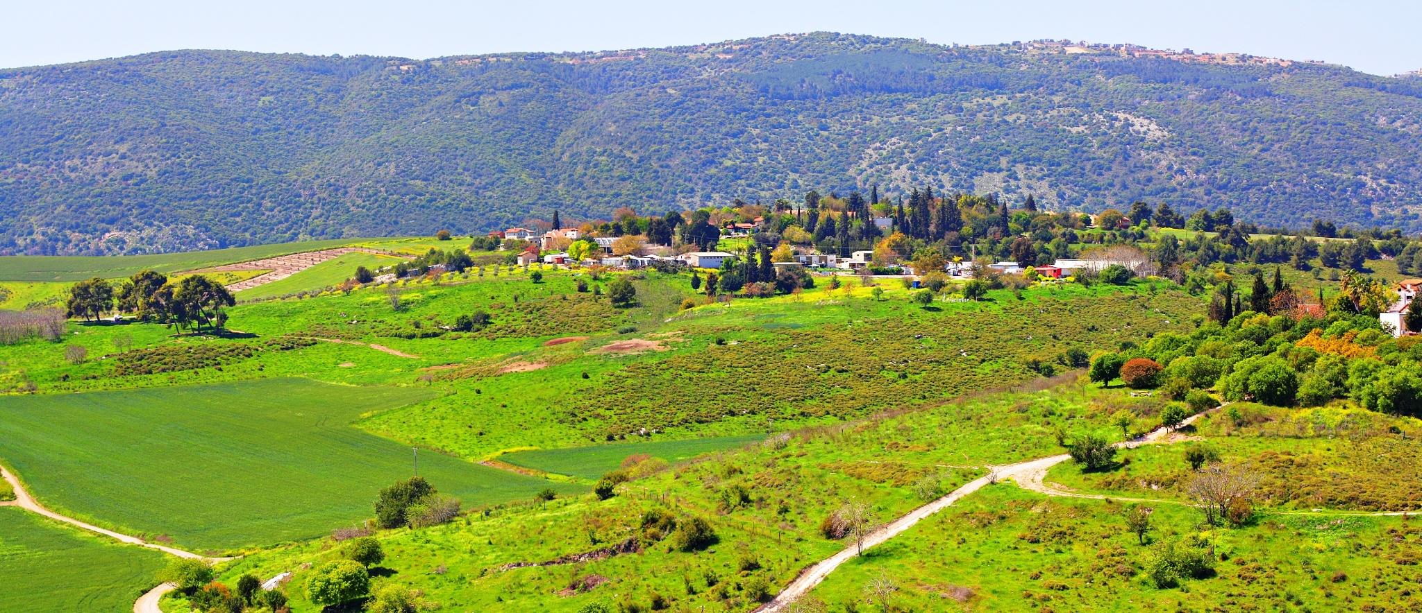 Lower Galilee.Kiryat Tiv'on.Israel by Konstantin Bolotinsky
