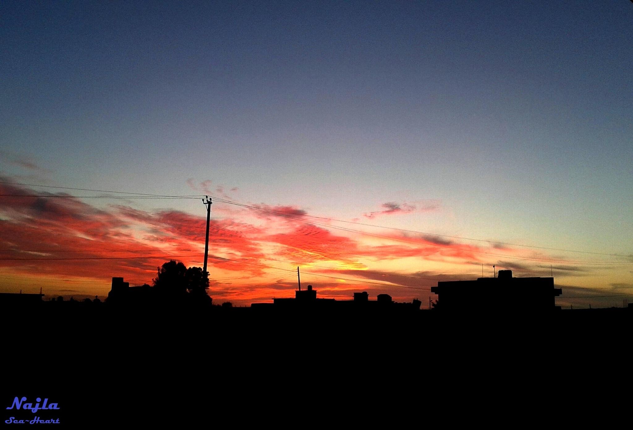 Red Sky  by Najla Almsalati