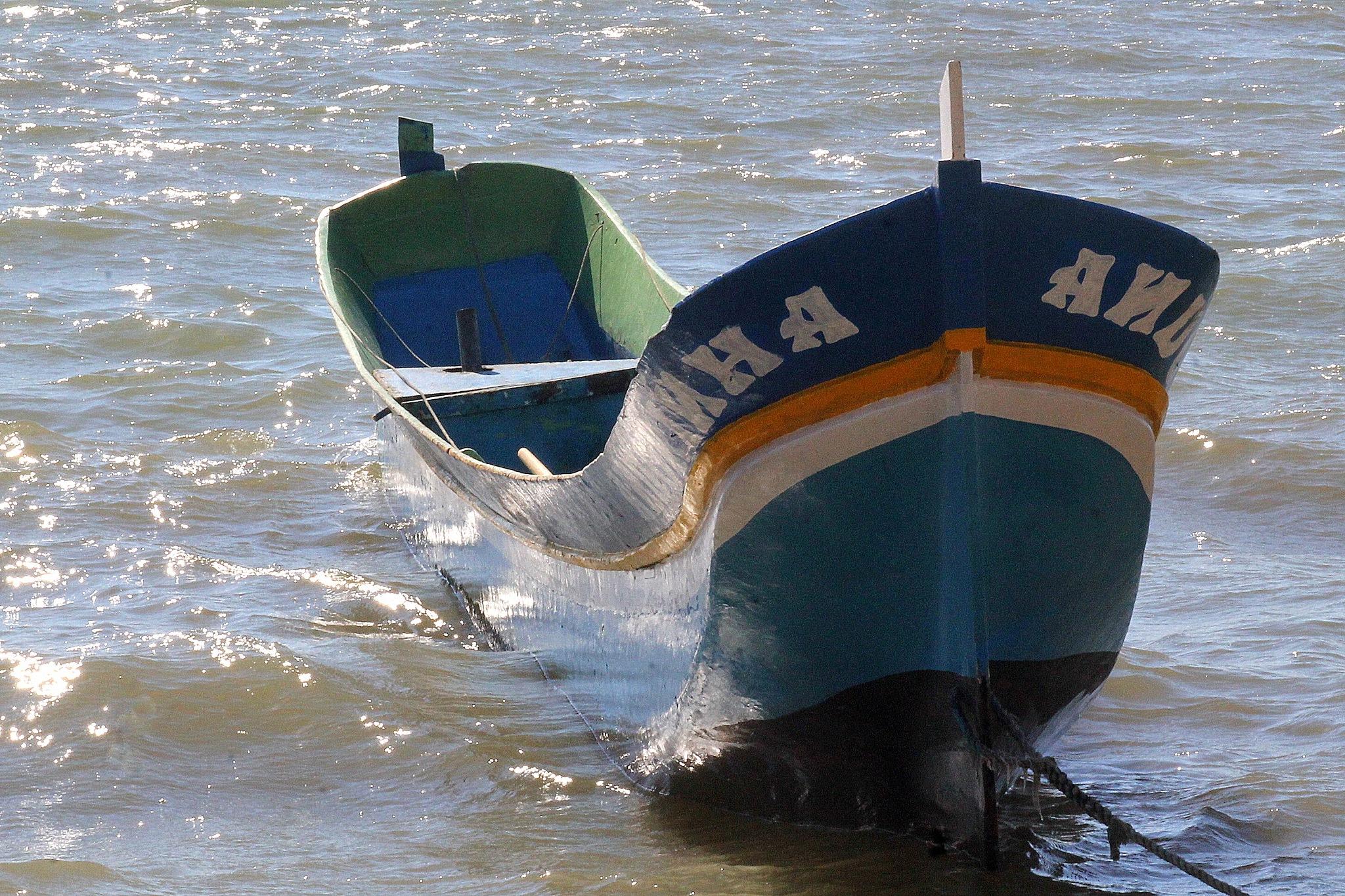 Canoe by Marie Asmar