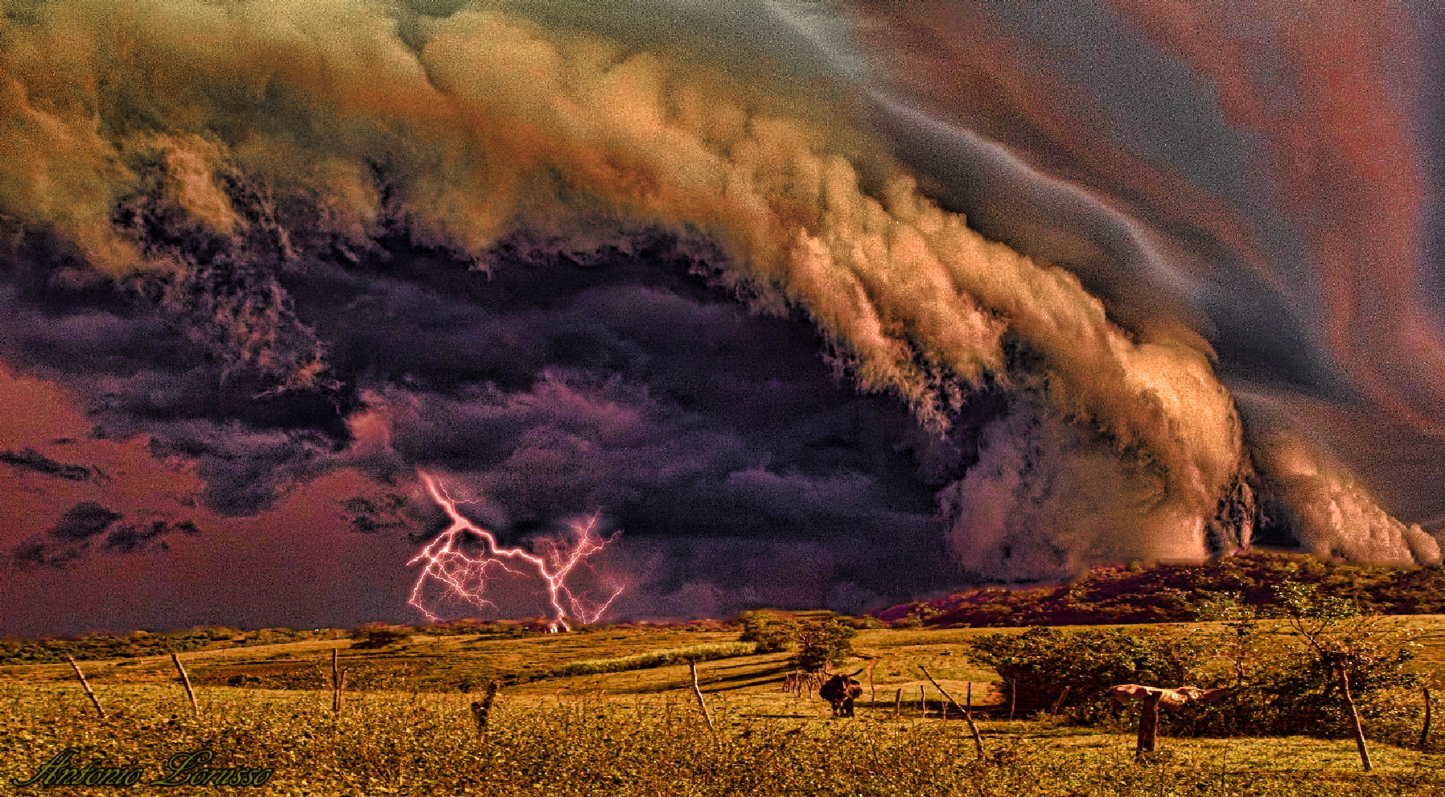 the storm by Anto Lorusso