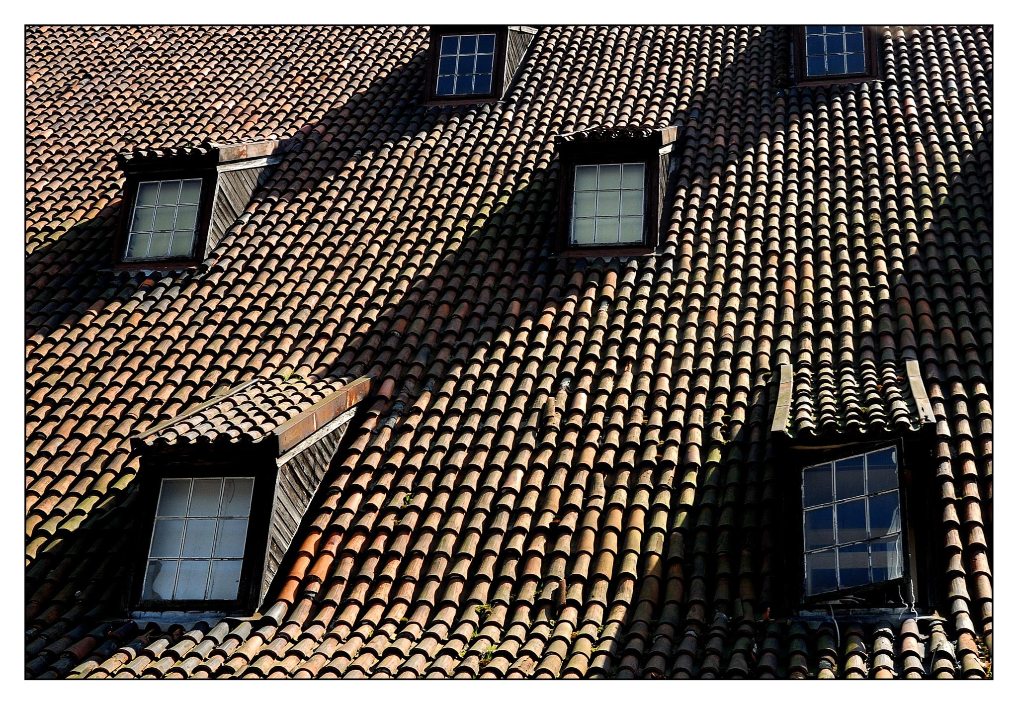 Roof by karlbertil
