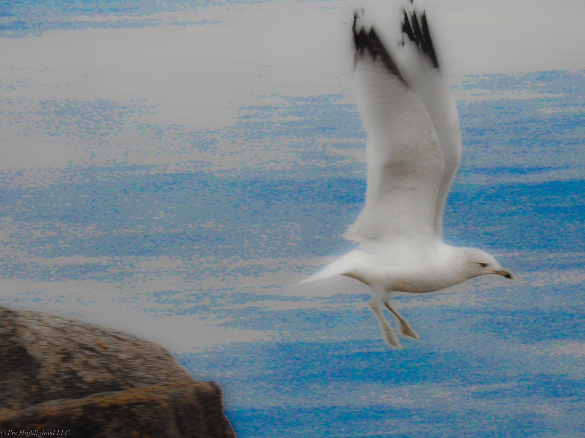 Take off! by Samantha