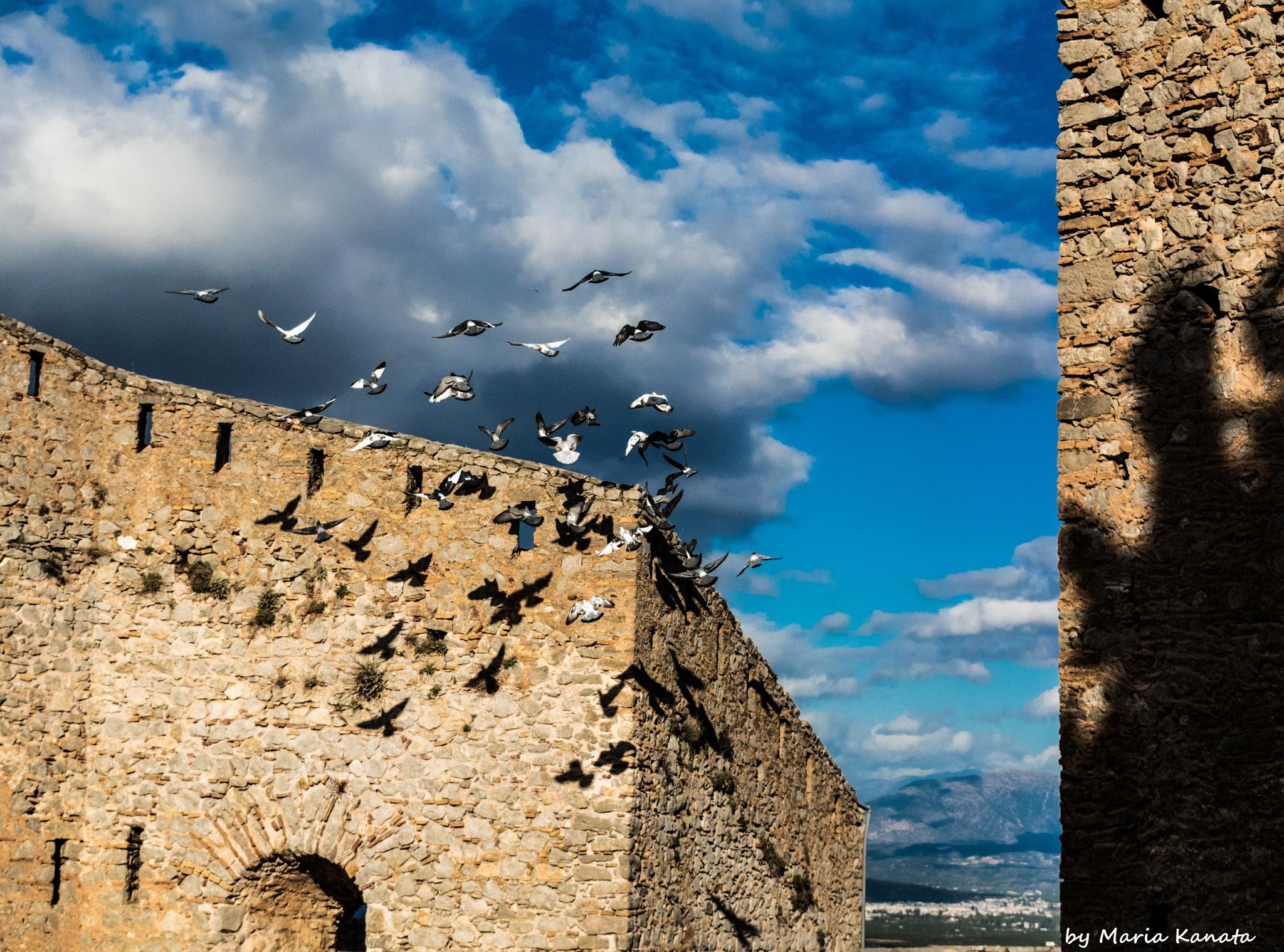 Palamidi castle by Maria Kanata