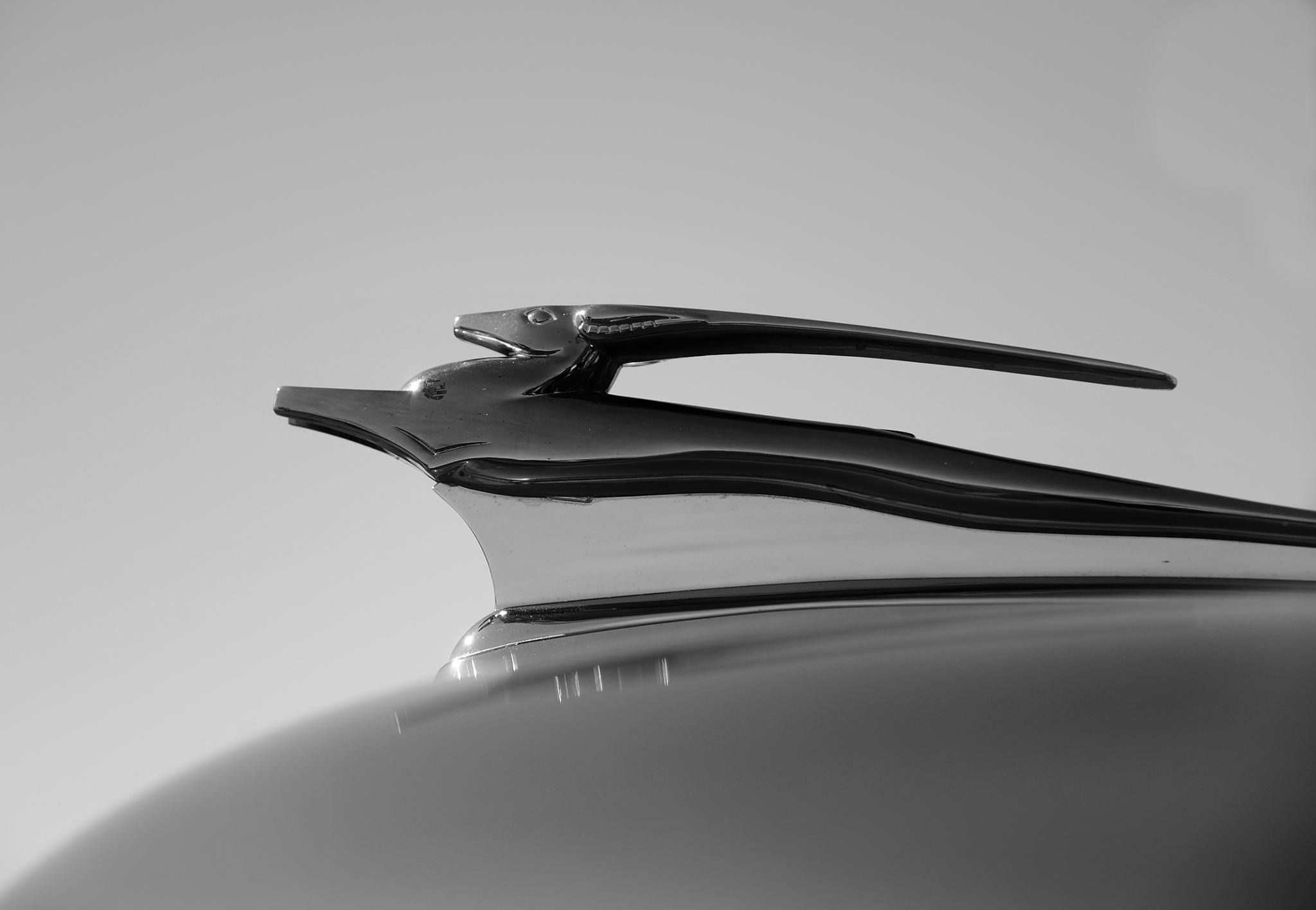 1951 Chevrolet by gmark13