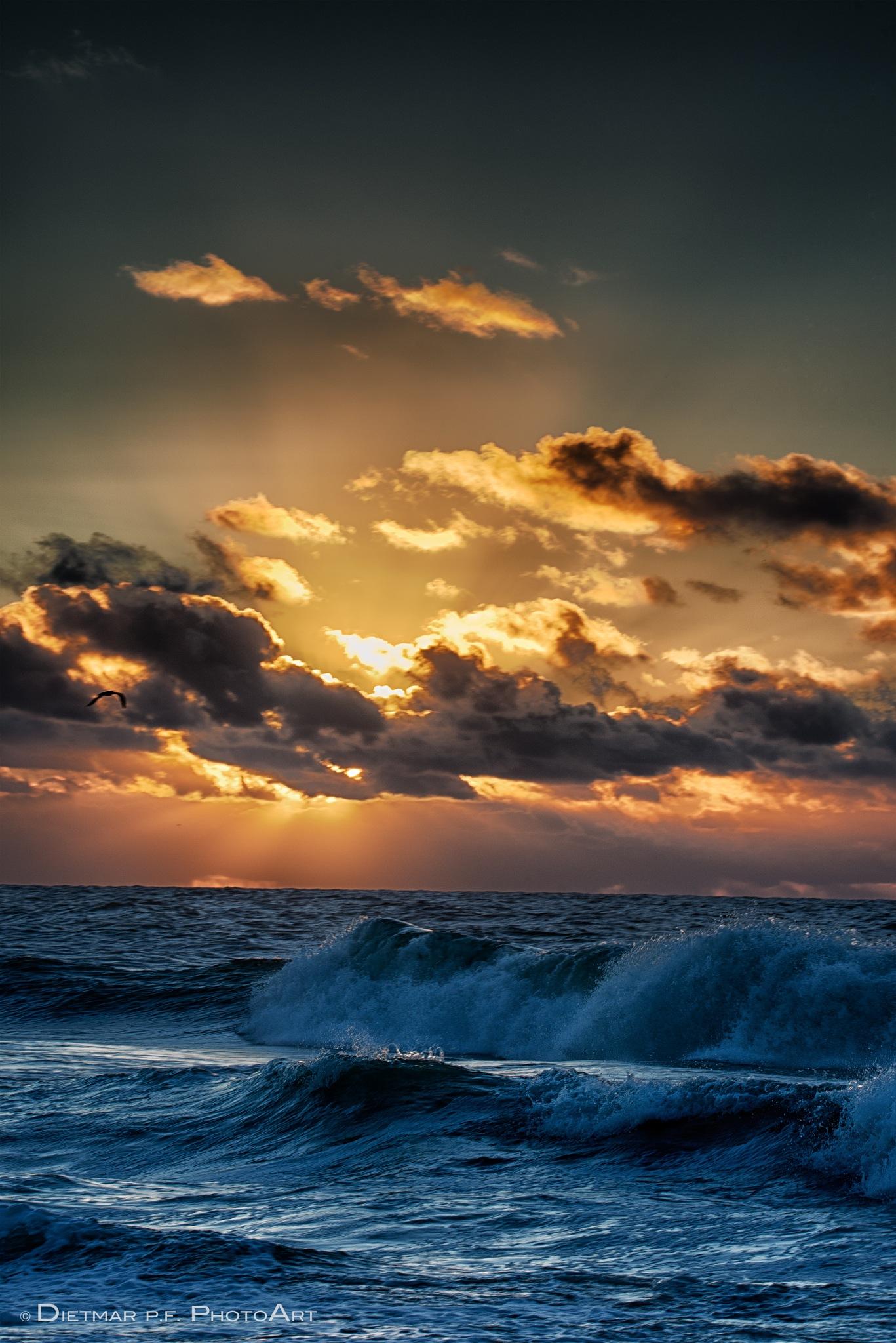 WAVES ... ♥ by ᗪᴵᴱᵀᗰᗩᖇ ᑭ.ᖴ. ᑭᕼᴼᵀᴼᗩᖇᵀ