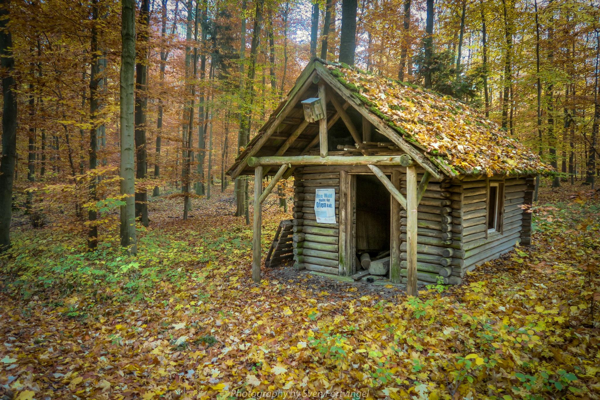 Forest cabin  by Sven Fortvingel Photography