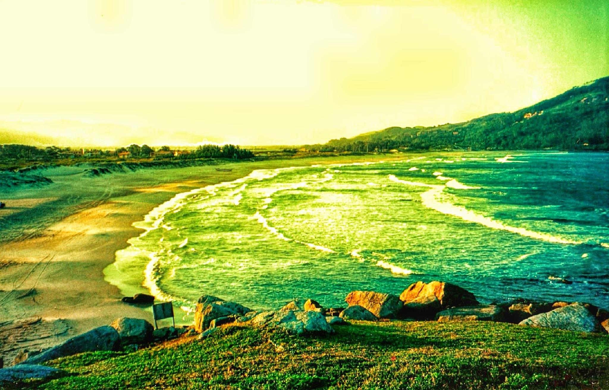 Chlorophyll ocean - Brazil by CopaCabana