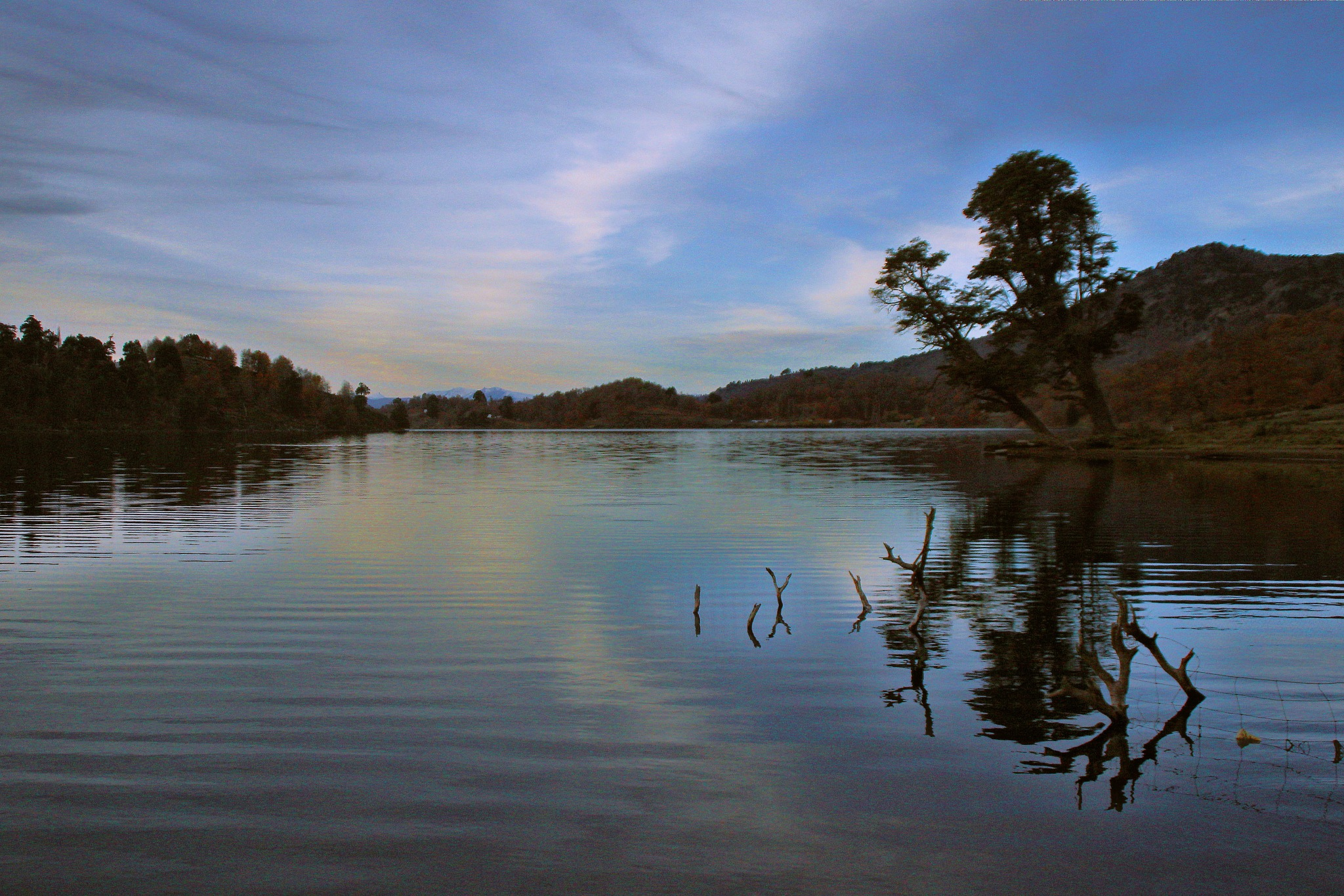 Laguna Icalma, Araucanía Chile.  by Héctor Eduardo Soto Arias