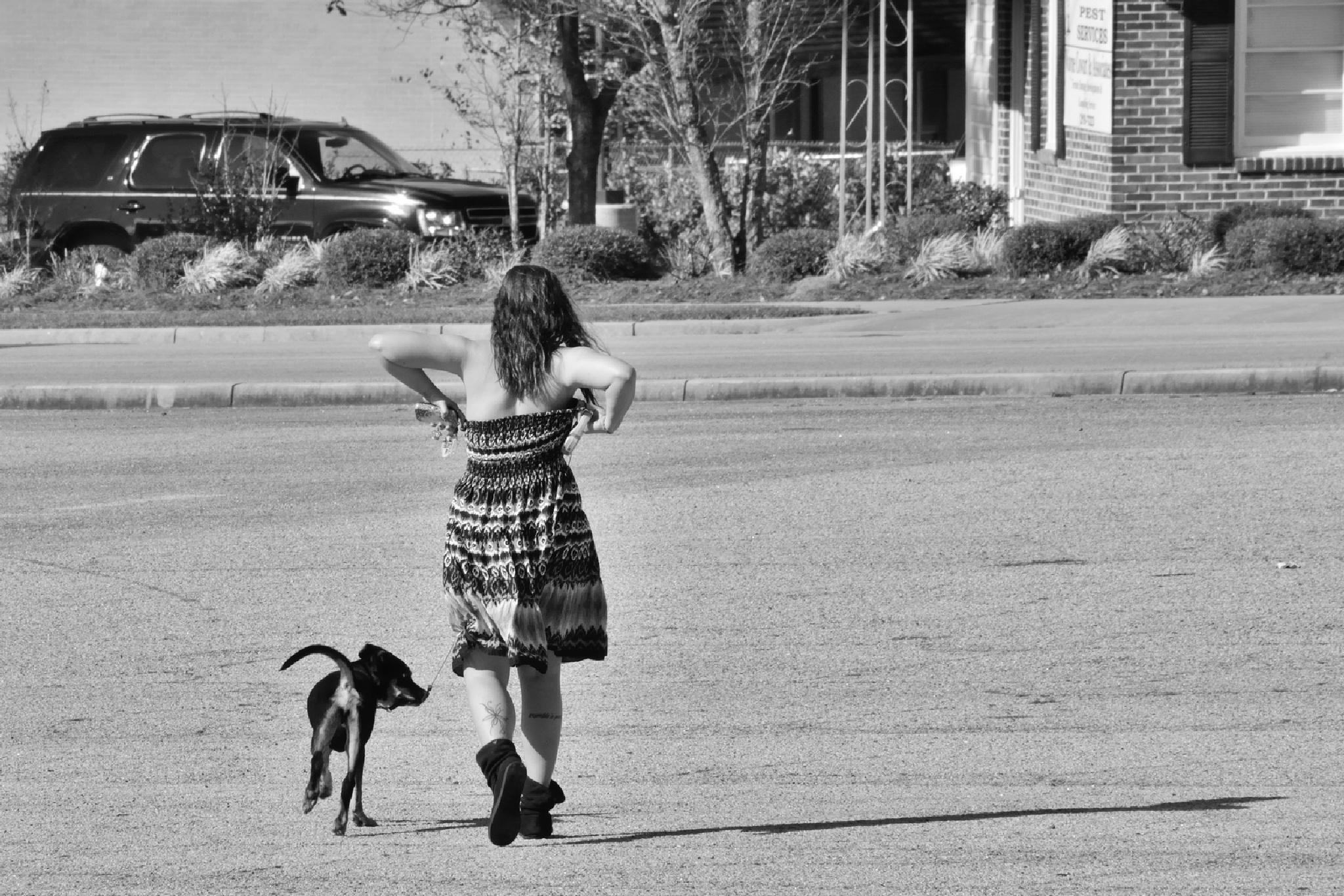 Puppy training. by jlbtwee