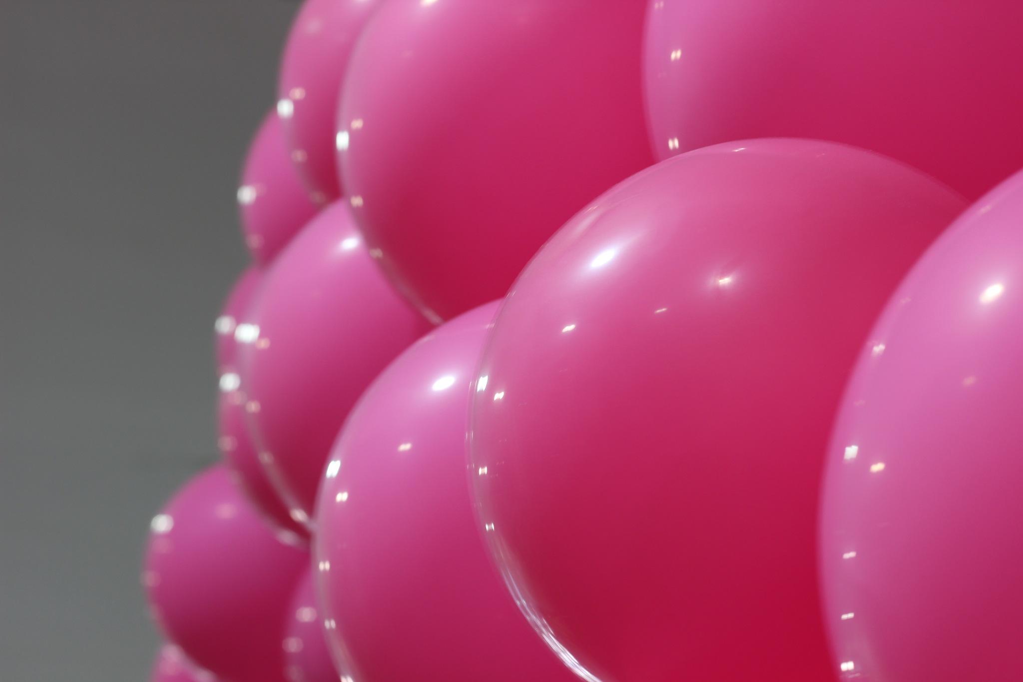 Balloons in rose by Irineu Lúcio